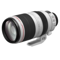Объектив Canon EF 100-400 f/4.5-5.6 L IS USM